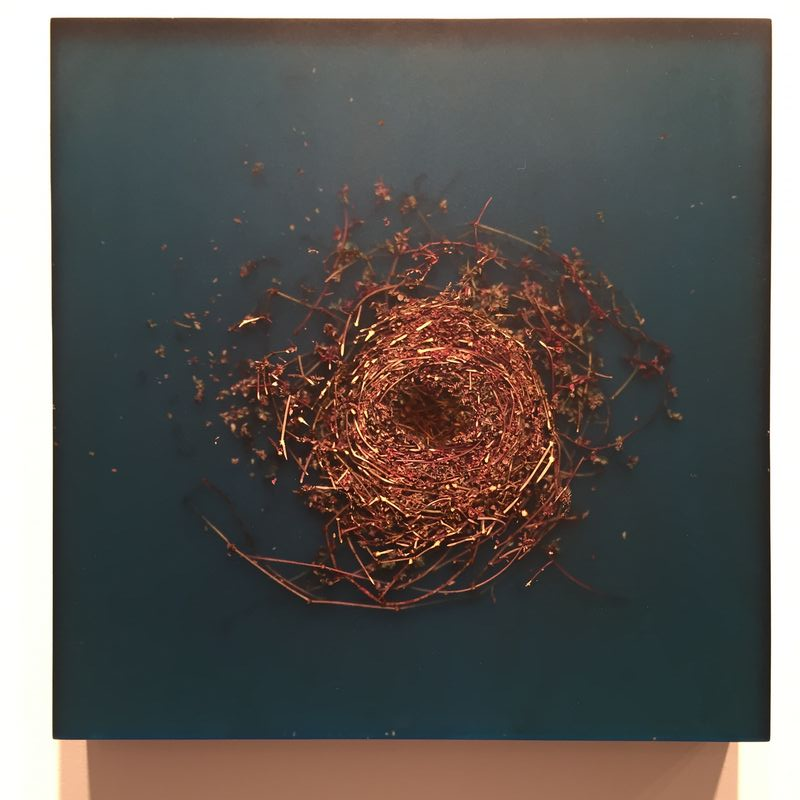 Exhibition Of New Work By Mayme Kratz at Dolby Chadwick