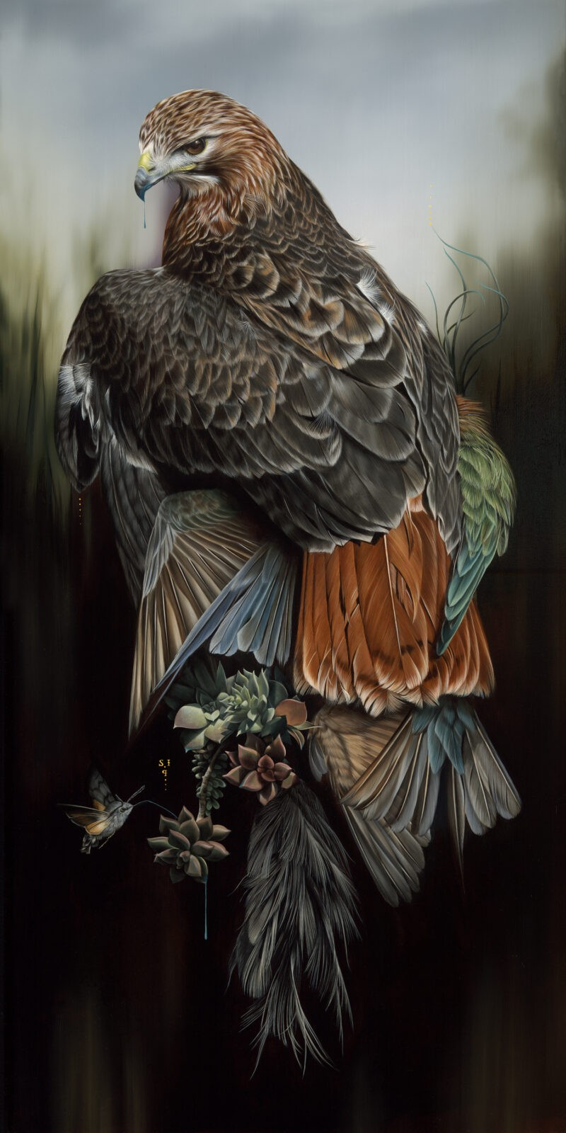 Fierce Feathered Portraits of Brooding Birds by Josie Morway