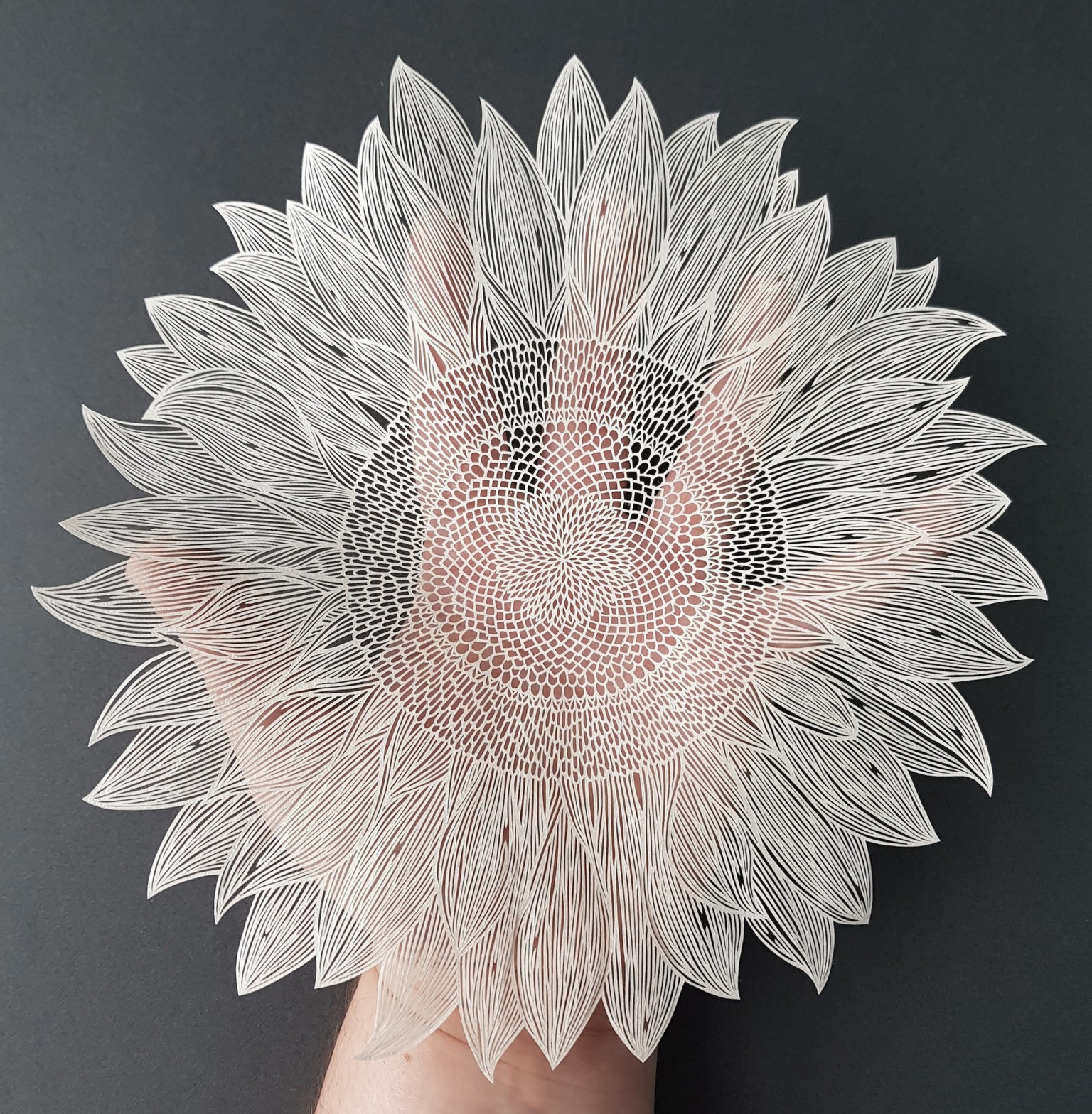 Bubble Covered Flowers And Ornate Animals Formed From Cut Paper By