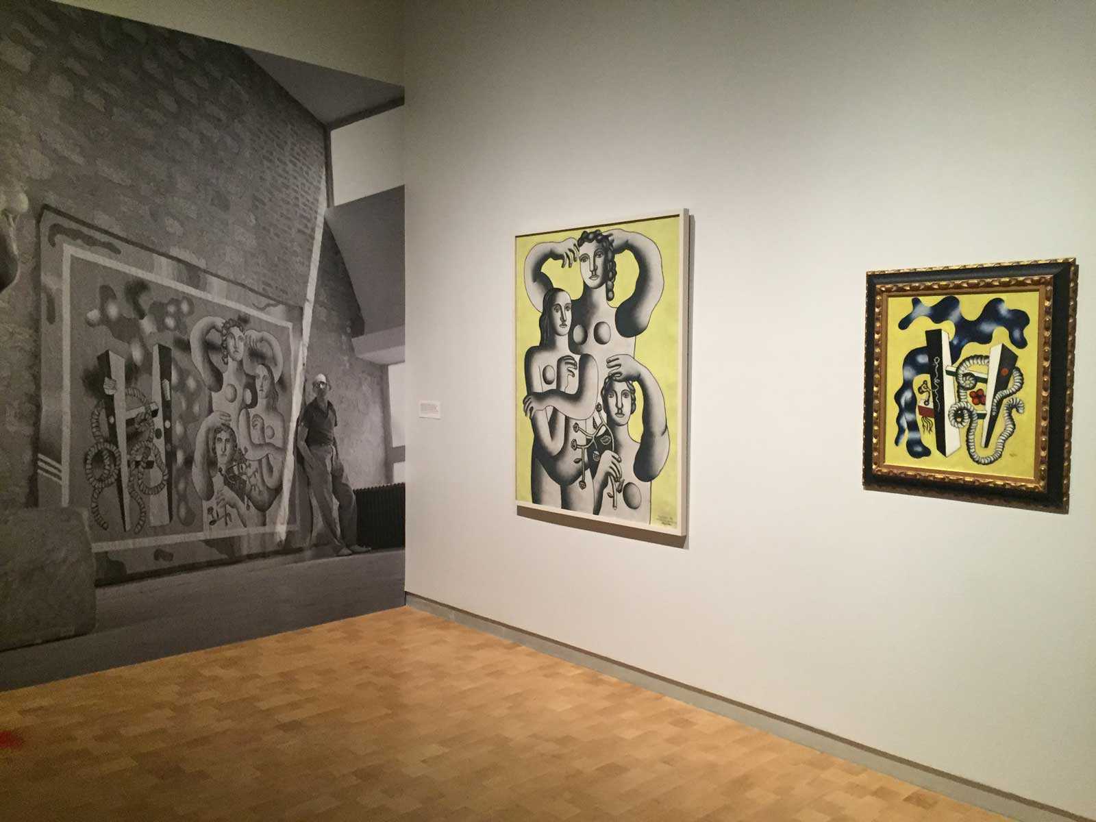 The Barnes Foundation presented an exhibition of 20th century art from the Marie Cuttoli collection