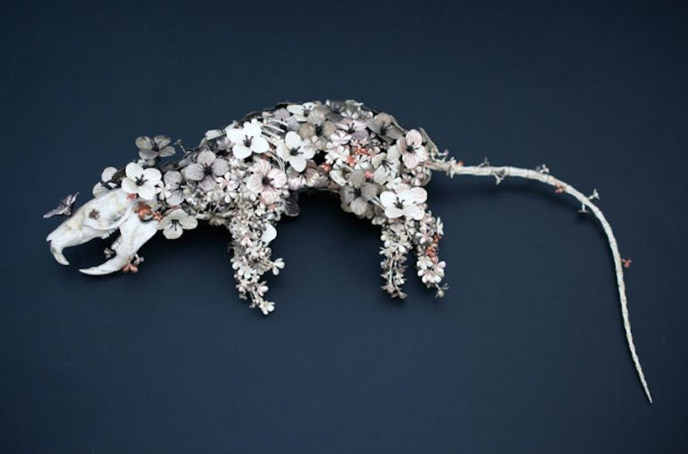Blooming Metallic Birds and Other Animals by Taiichiro Yoshida
