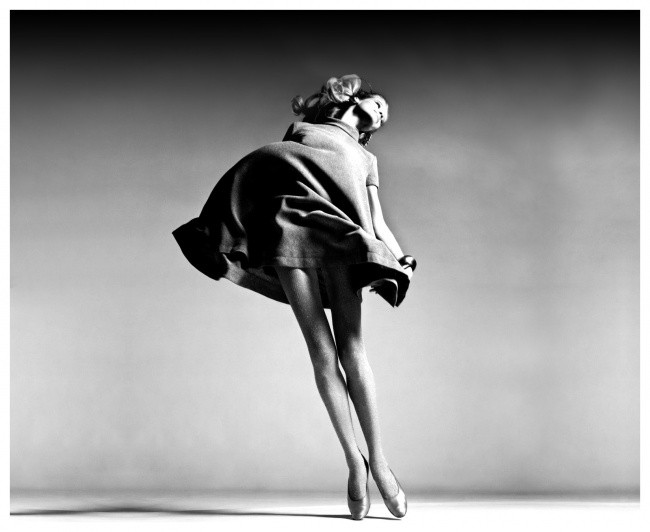 Richard avedon фотограф модельный бизнес лагань