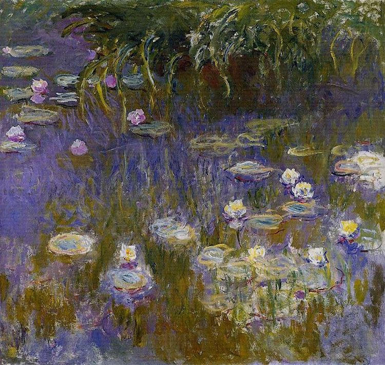 a comparison of de koonings lily pond and monets water lilies