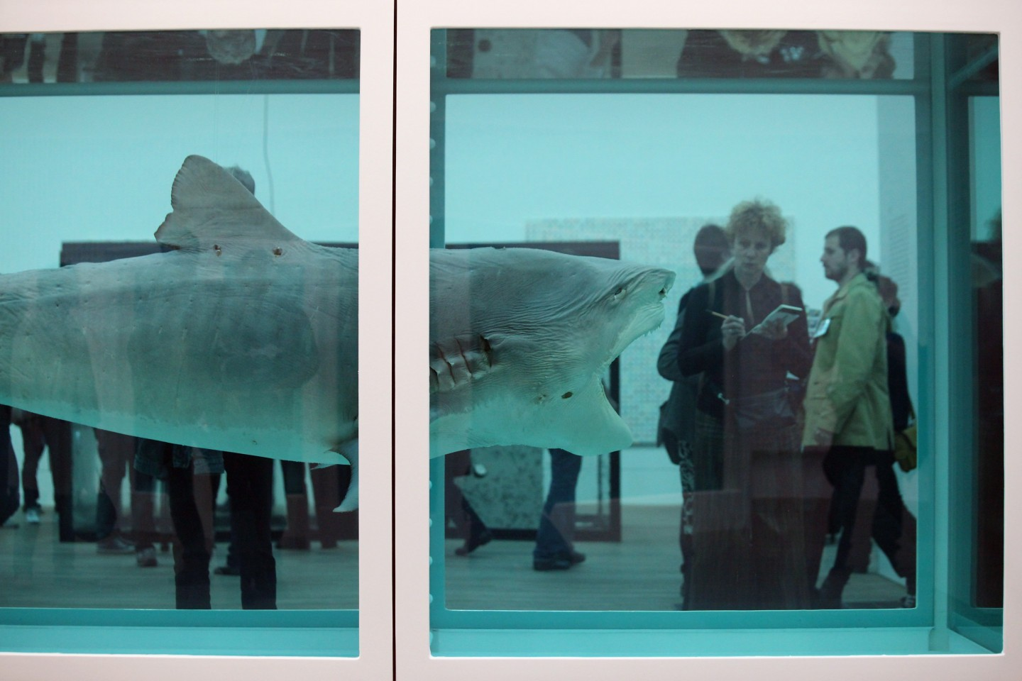 "Damien Hirst's exhibition ""The Physical Impossibility of Death in the Consciousness of Living"" in Tate Modern, 2012."