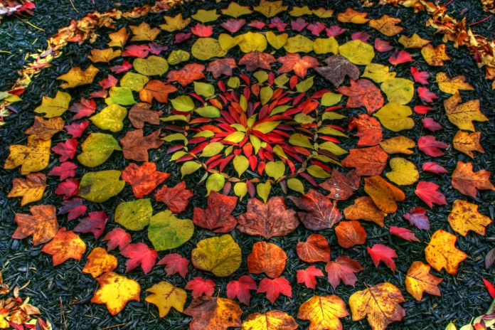 Natural sculptures by Andy Goldsworthy | USA Art News
