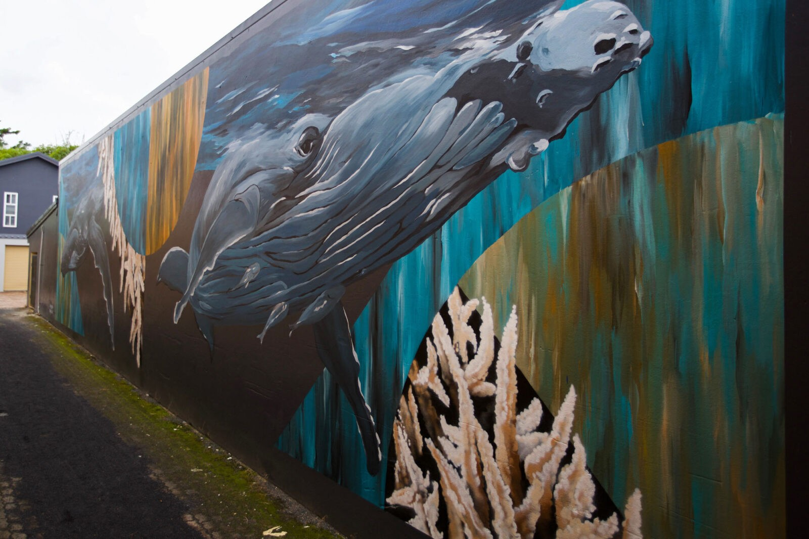 Murals of the Sea Walls project to save the oceans