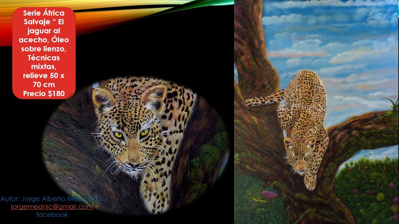 Creativity by Talented Jorge Alberto Medrano Torres Presented in the Virtual Gallery
