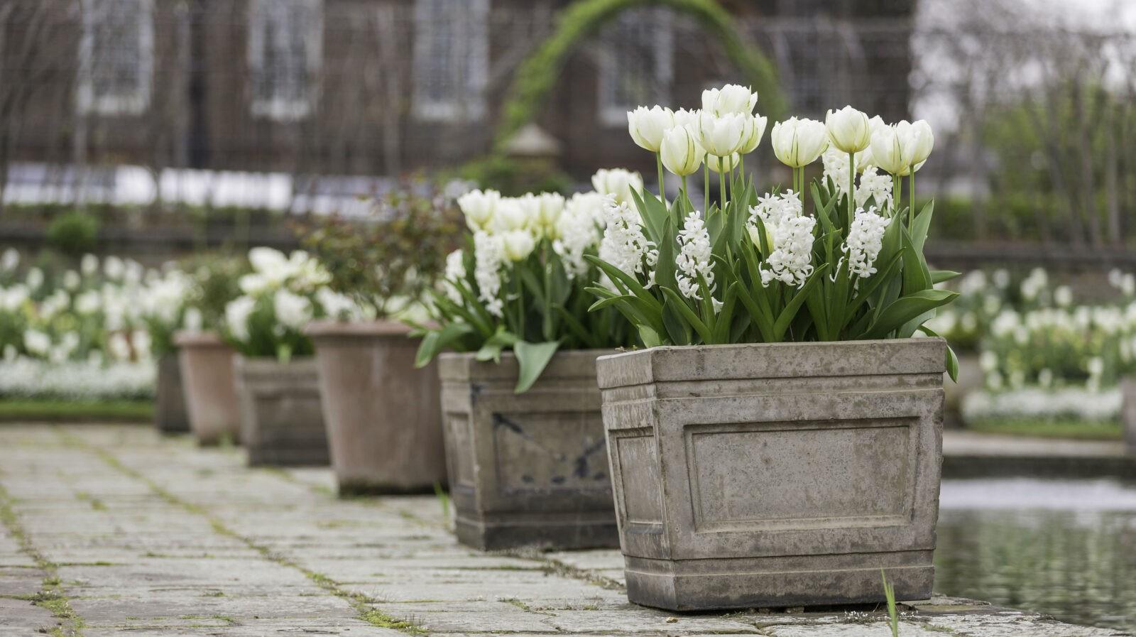 A Princess Diana Memorial Garden Has Opened At Kensington Palace