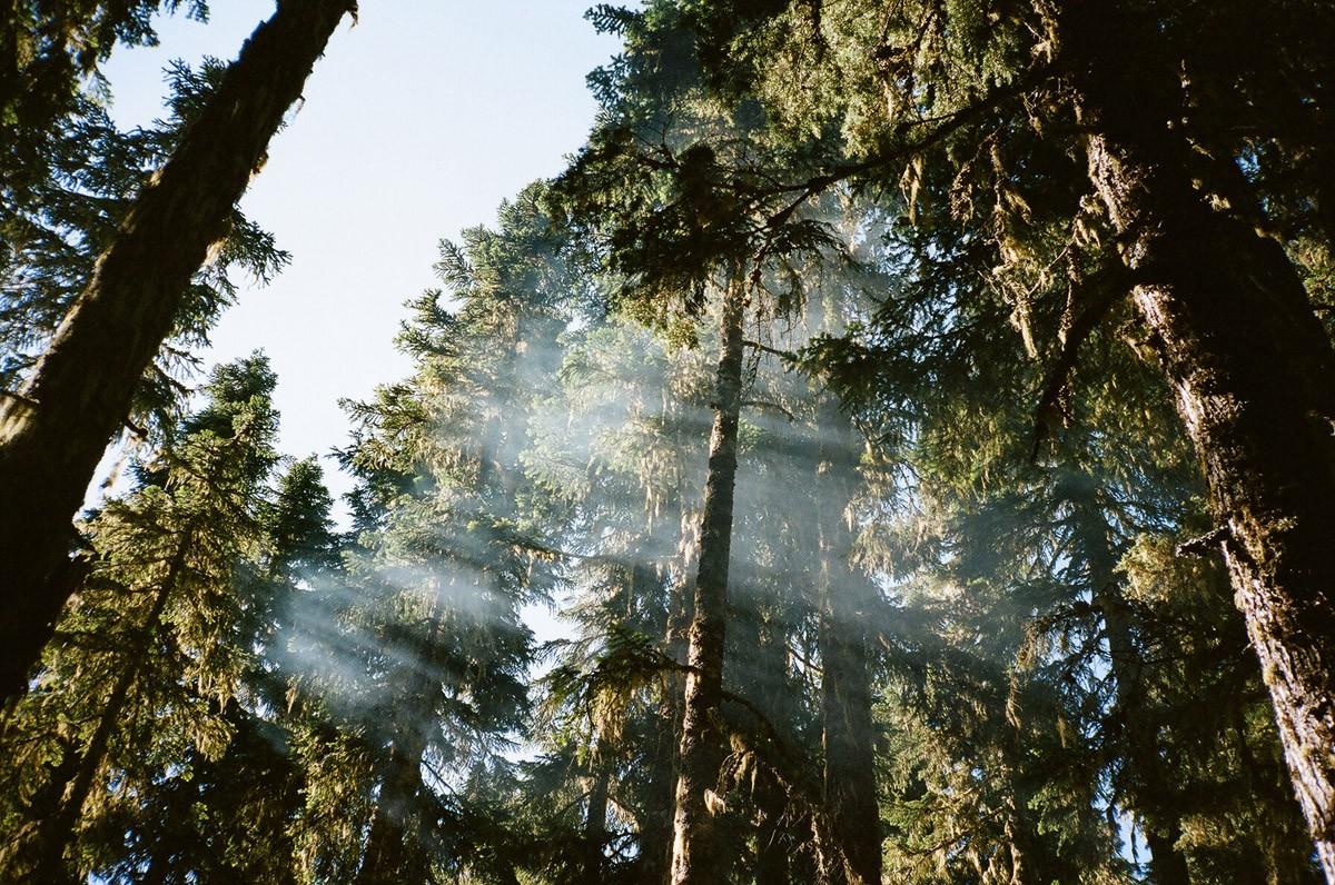 Photographer Spotlight: Jeff Luker