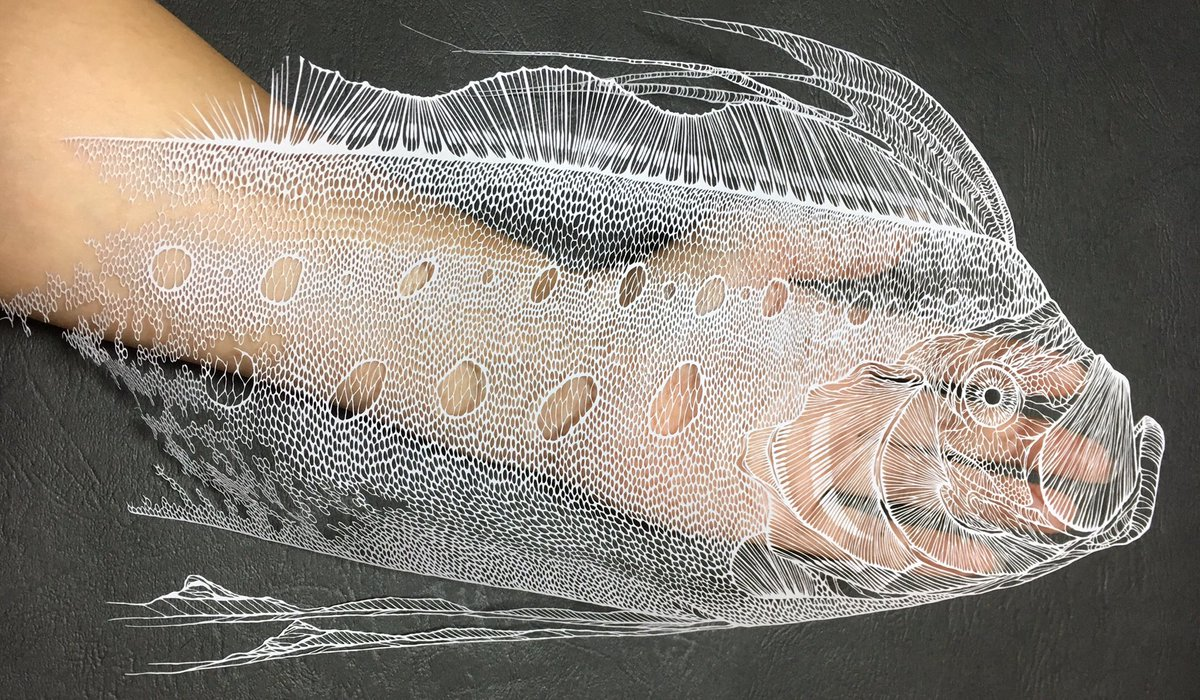 Complex Cuts Form New Detailed Paper Sea Creatures, Flowers, and Reptiles