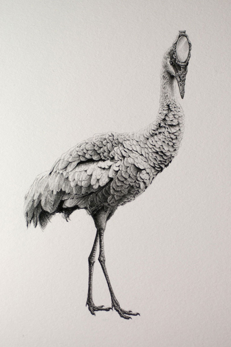 Bestiary of Improbable Animals III: Drawings by Mateo Pizarro