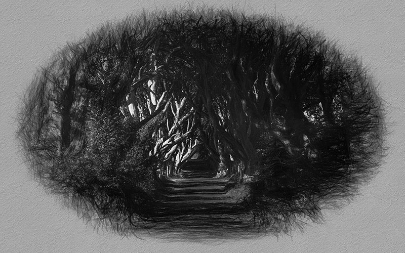 Behind the Gardens: Drawings by Neda Vent Fischer