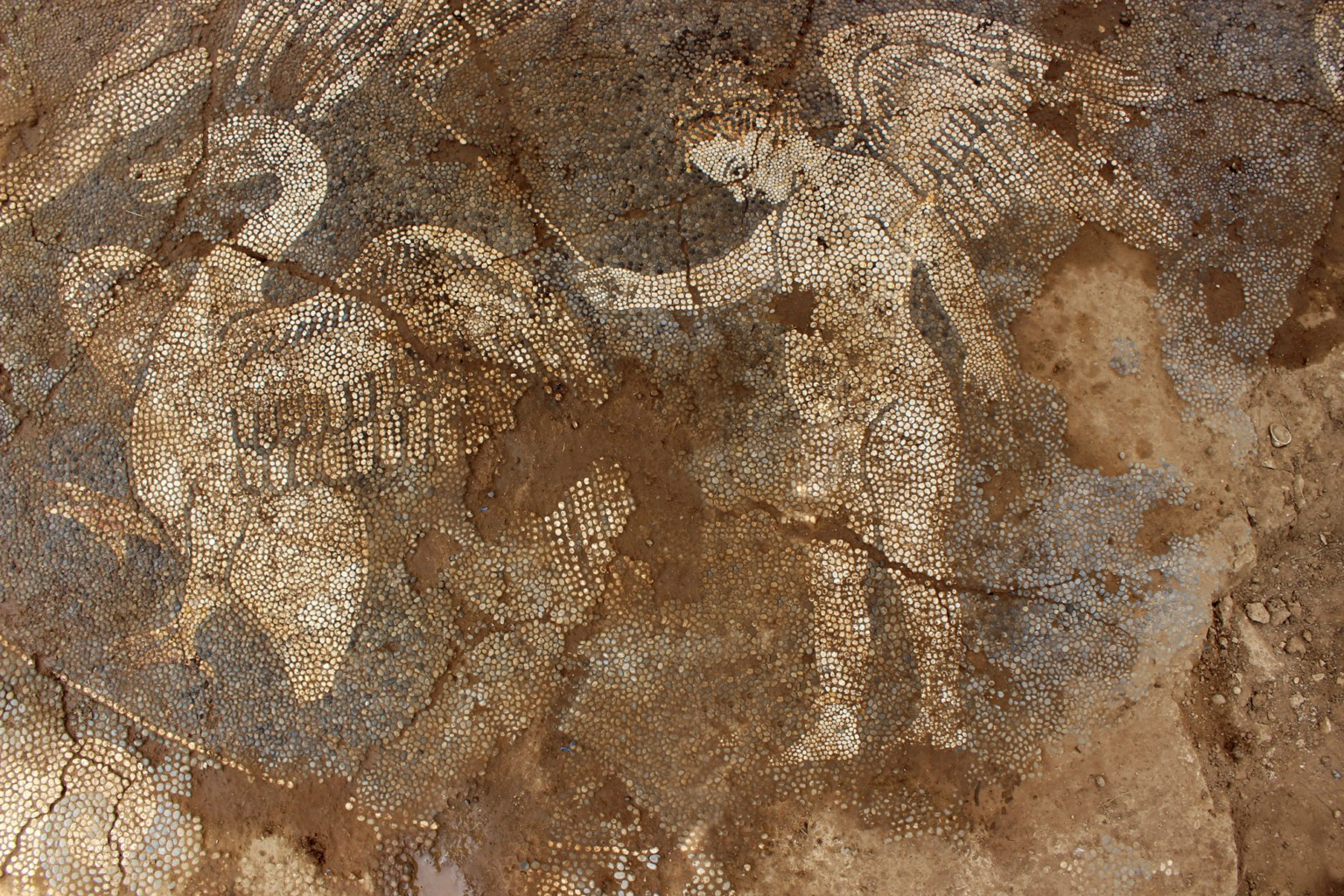 A Friendly Octopus Found Within Ancient River Pebble Mosaics in Greece