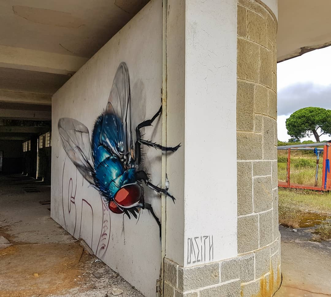 Larger-Than-Life Insects Lurk Around Abandoned Buildings in Street Art by Odeith