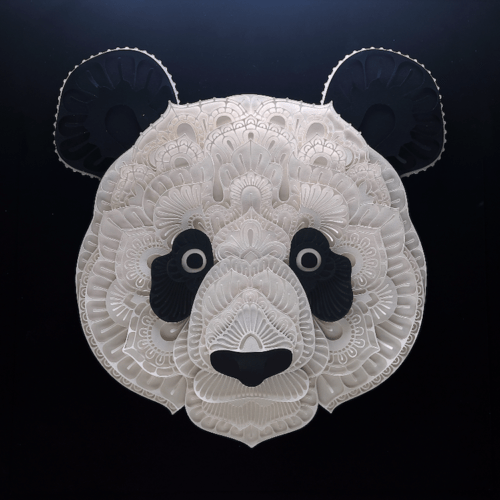 Exquisite portraits of endangered animal species by Patrick Cabral