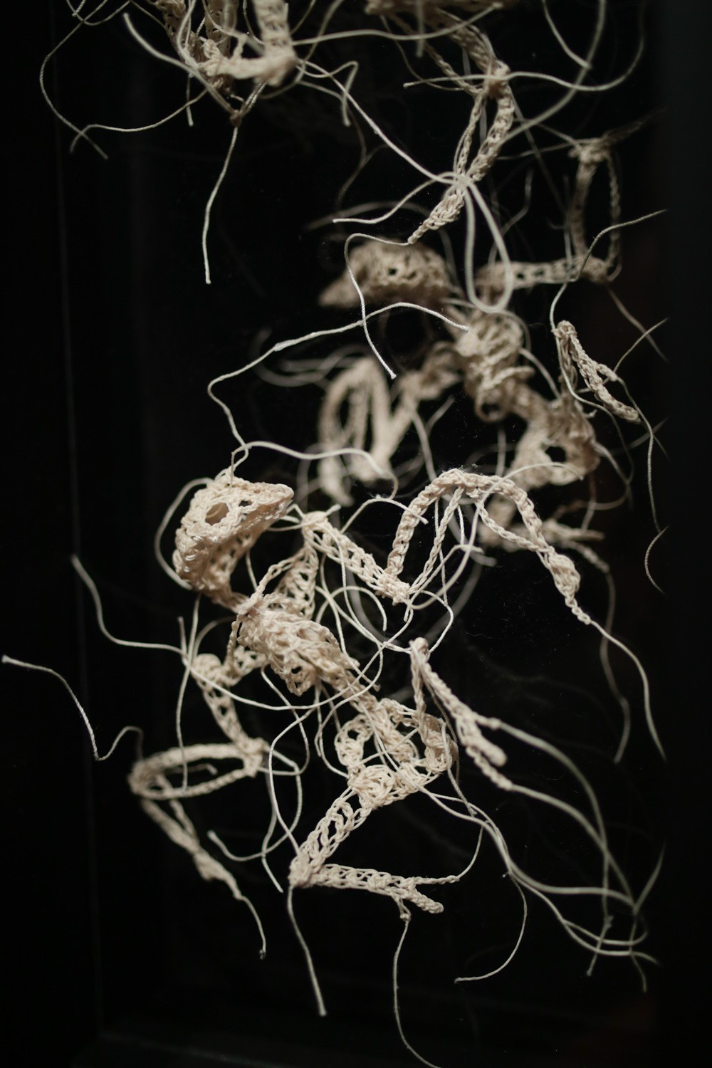 Сrocheted Brittle Skeletons by Caitlin McCormack