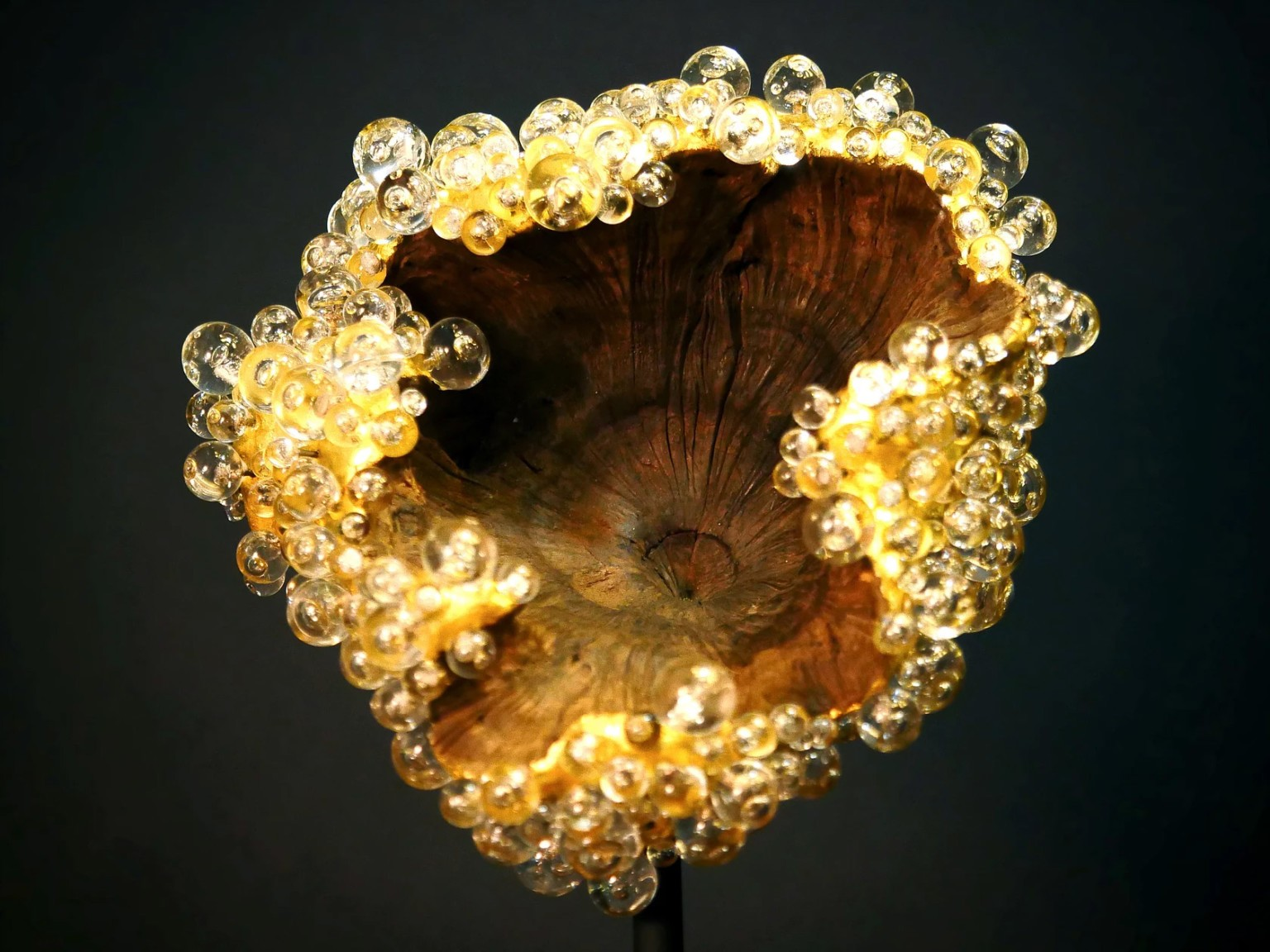 Glass Beaded Sculptures by Valérie Rey Bring a Luminous New Dimension to Discarded Wood