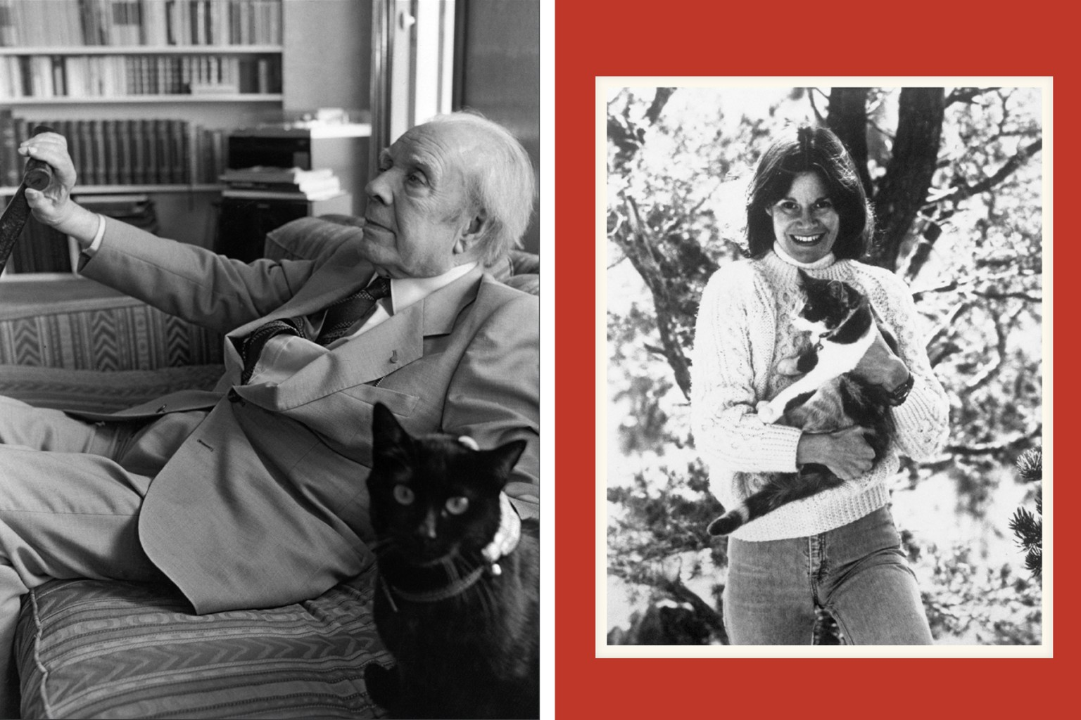 A New Book by Alison Nastasi Looks at the Affectionate Relationships Between Writers and Their Cats